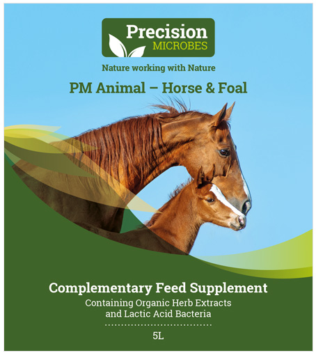 Horse and Foal Feed